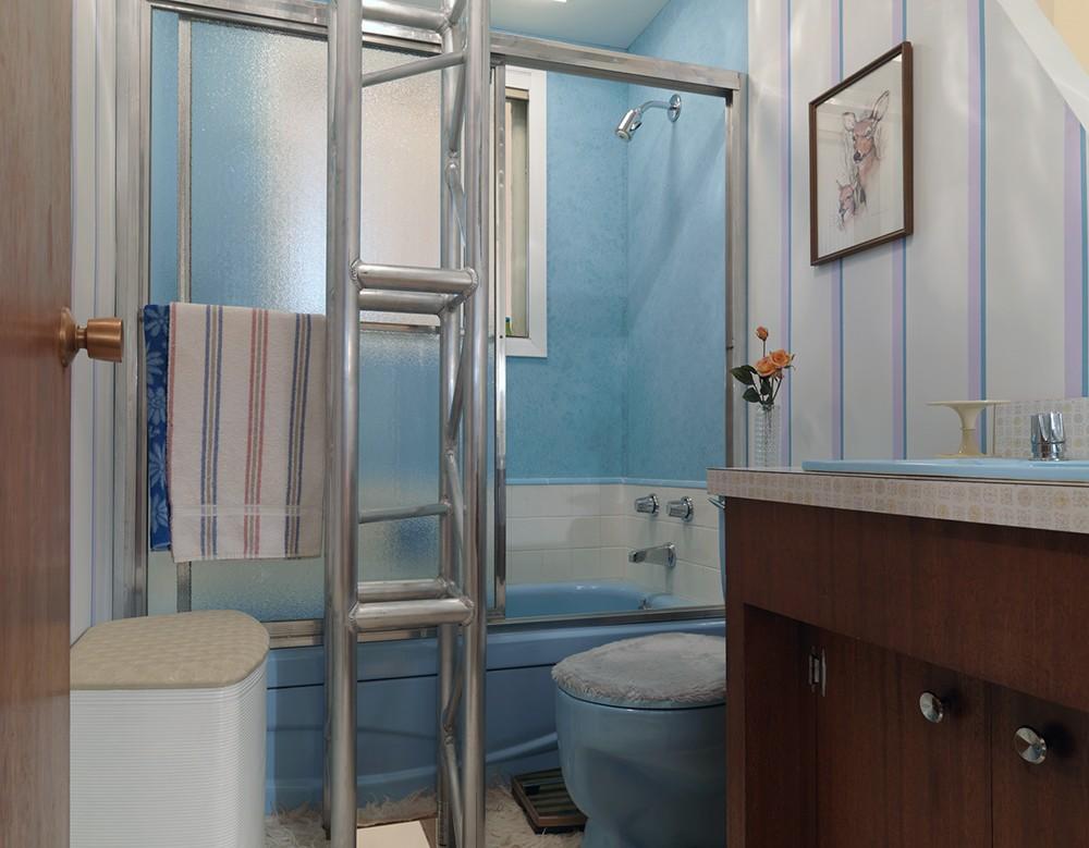 1960s Bathroom Reece Terris